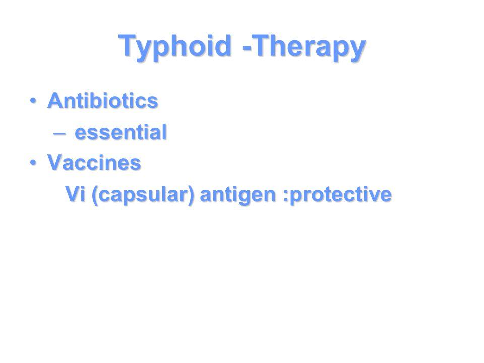 Typhoid -Therapy AntibioticsAntibiotics – essential VaccinesVaccines Vi (capsular) antigen :protective Vi (capsular) antigen :protective