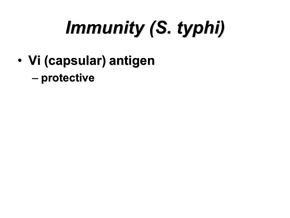 Immunity (S. typhi) Vi (capsular) antigenVi (capsular) antigen –protective