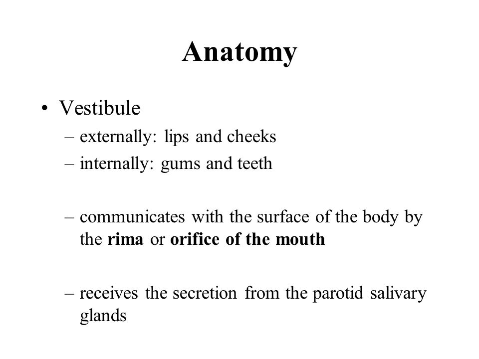 Anatomy First molars 6th year.Two central incisors7th year.