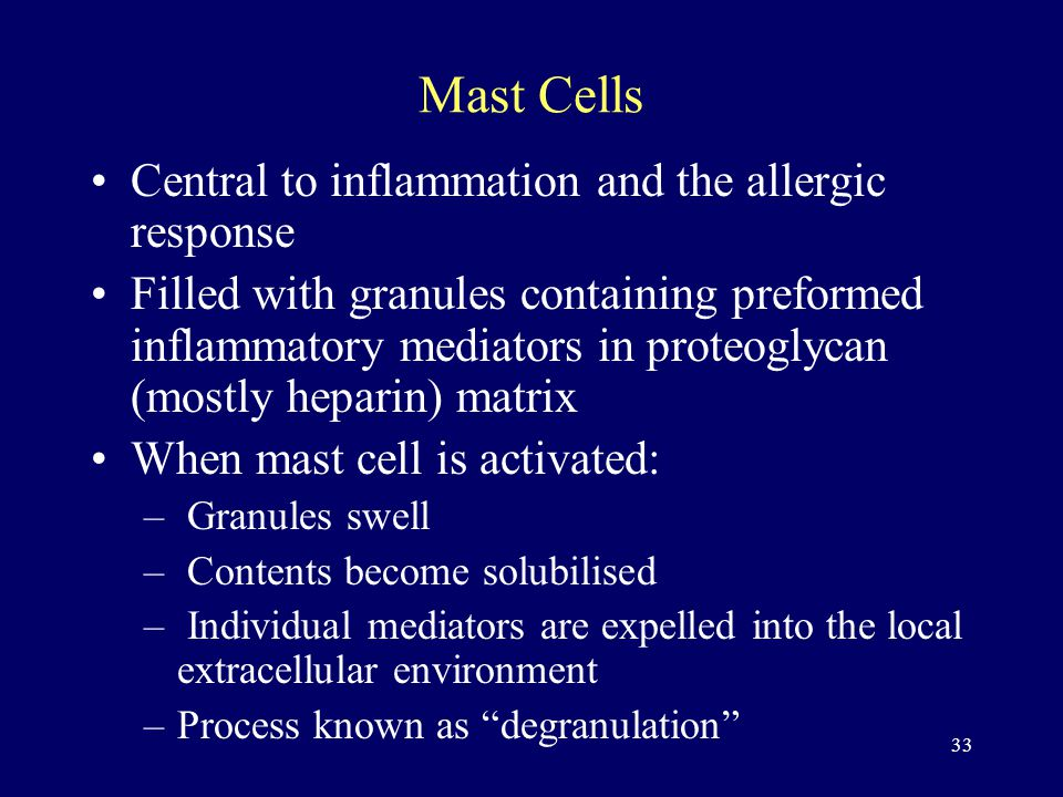 33 Mast Cells Central to inflammation and the allergic response Filled with granules containing preformed inflammatory mediators in proteoglycan (mostly heparin) matrix When mast cell is activated: – Granules swell – Contents become solubilised – Individual mediators are expelled into the local extracellular environment –Process known as degranulation