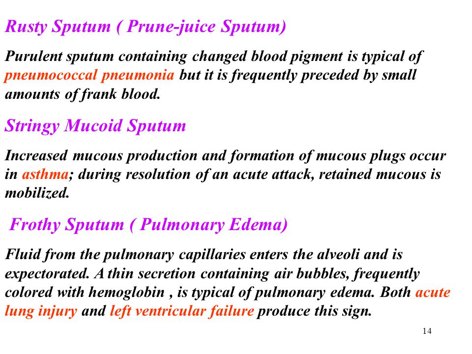 14 Rusty Sputum ( Prune-juice Sputum) Purulent sputum containing changed blood pigment is typical of pneumococcal pneumonia but it is frequently prece