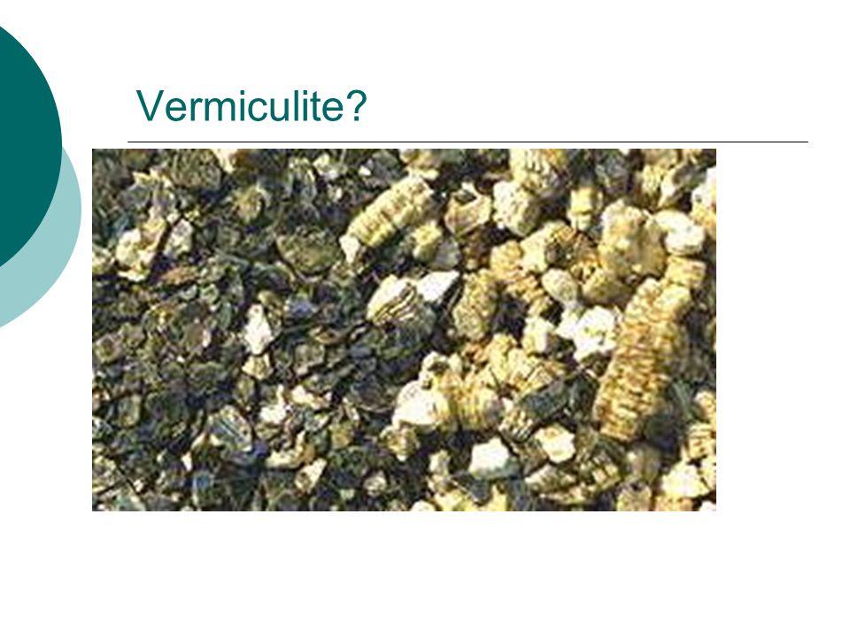 Vermiculite?