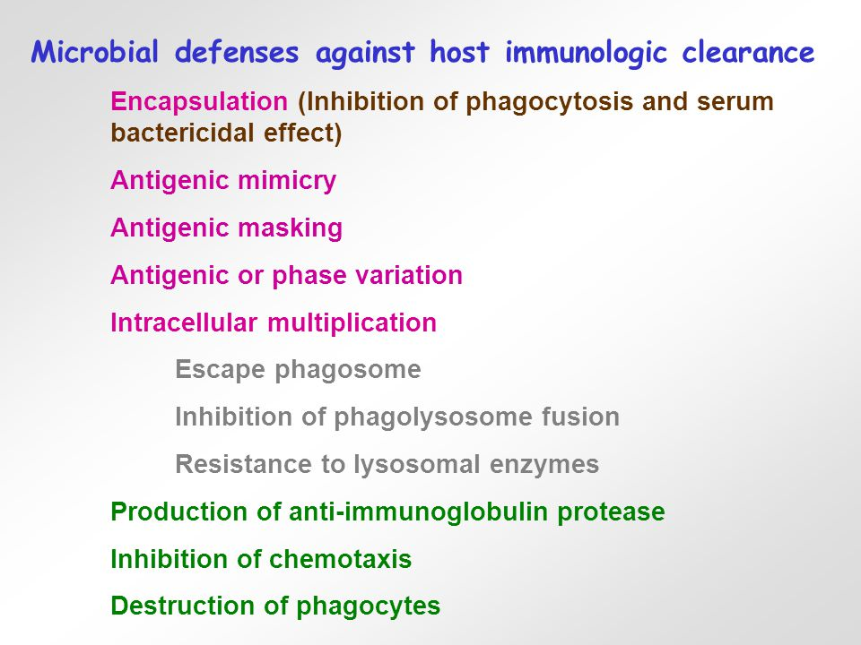 Microbial defenses against host immunologic clearance Encapsulation (Inhibition of phagocytosis and serum bactericidal effect) Antigenic mimicry Antigenic masking Antigenic or phase variation Intracellular multiplication Escape phagosome Inhibition of phagolysosome fusion Resistance to lysosomal enzymes Production of anti-immunoglobulin protease Inhibition of chemotaxis Destruction of phagocytes