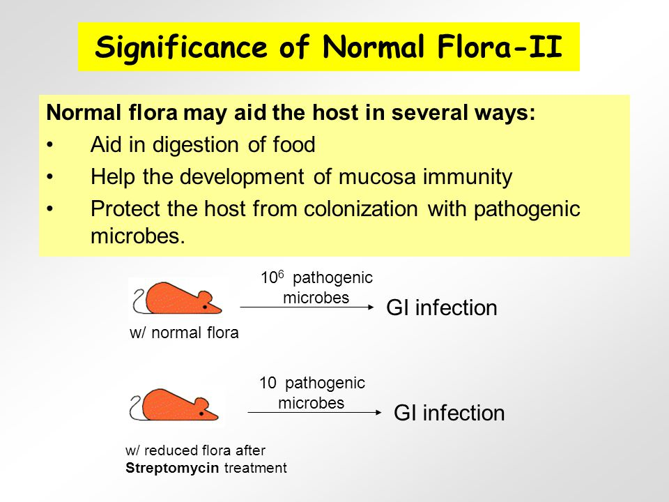 1.Transmissibility 2.Adherence to host cells 3.
