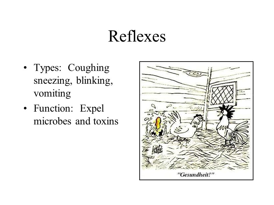 Reflexes Types: Coughing sneezing, blinking, vomiting Function: Expel microbes and toxins
