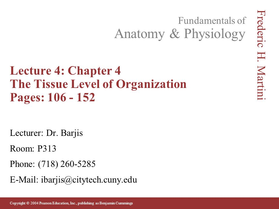 Copyright © 2004 Pearson Education, Inc., publishing as Benjamin Cummings Fundamentals of Anatomy & Physiology Frederic H. Martini Lecture 4: Chapter