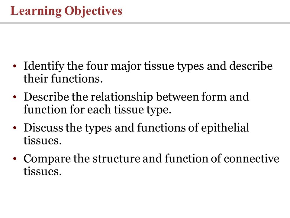 Learning Objectives Identify the four major tissue types and describe their functions.