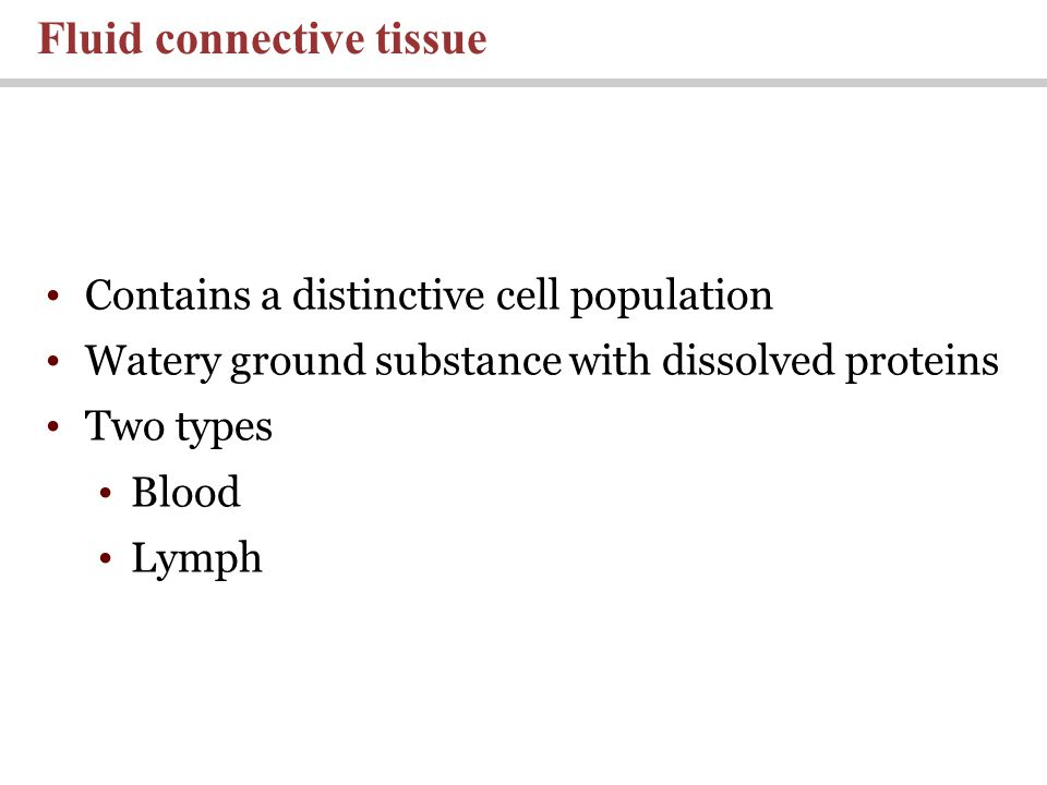 Fluid connective tissue Contains a distinctive cell population Watery ground substance with dissolved proteins Two types Blood Lymph