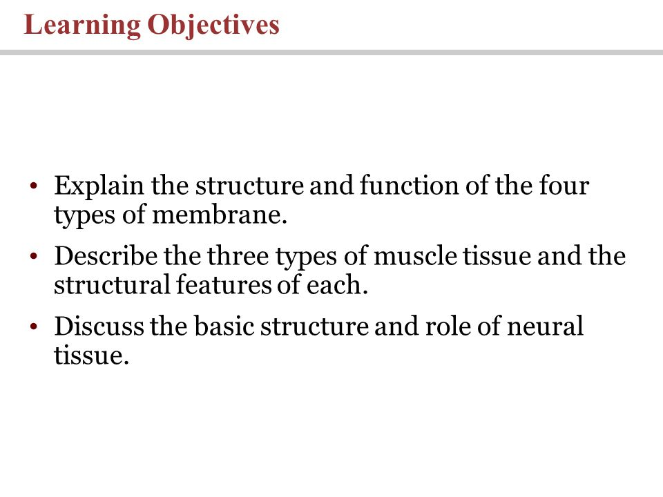 Learning Objectives Explain the structure and function of the four types of membrane.