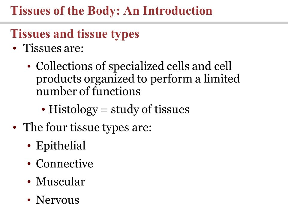 Tissues are: Collections of specialized cells and cell products organized to perform a limited number of functions Histology = study of tissues The fo