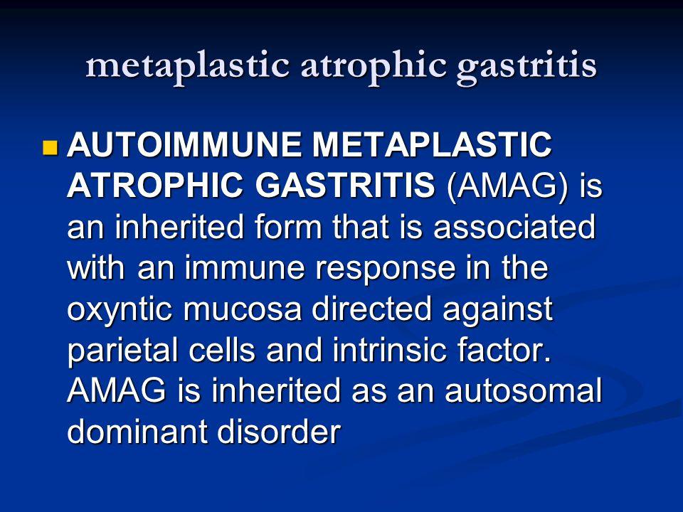 metaplastic atrophic gastritis AUTOIMMUNE METAPLASTIC ATROPHIC GASTRITIS (AMAG) is an inherited form that is associated with an immune response in the