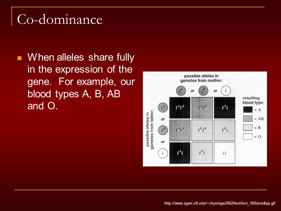 Co-dominance When alleles share fully in the expression of the gene.