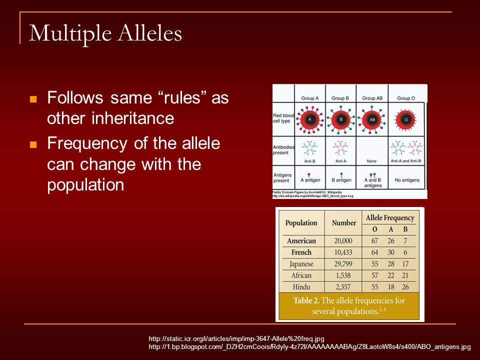 Multiple Alleles Follows same rules as other inheritance Frequency of the allele can change with the population http://static.icr.org/i/articles/imp/imp-3647-Allele%20freq.jpg http://1.bp.blogspot.com/_DZH2cmCoois/Rdyly-4z72I/AAAAAAAABAg/Z8LaotoW8s4/s400/ABO_antigens.jpg