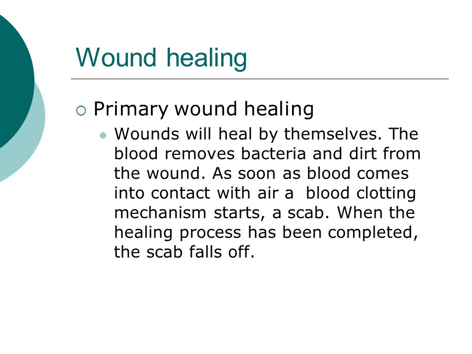 Wound healing  Primary wound healing Wounds will heal by themselves. The blood removes bacteria and dirt from the wound. As soon as blood comes into