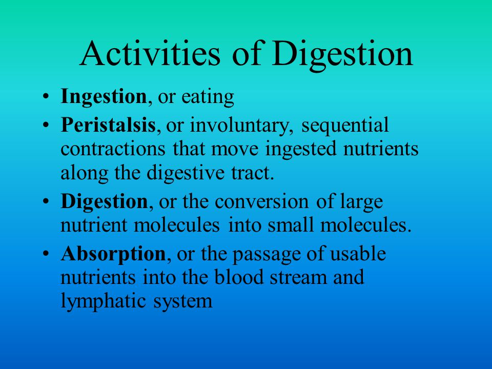 Gastric juice is composed of hydrochloric acid, mucus, and several enzymes.