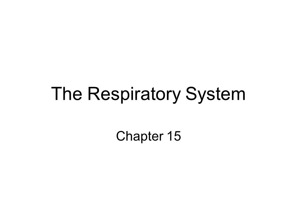 The Respiratory System Chapter 15
