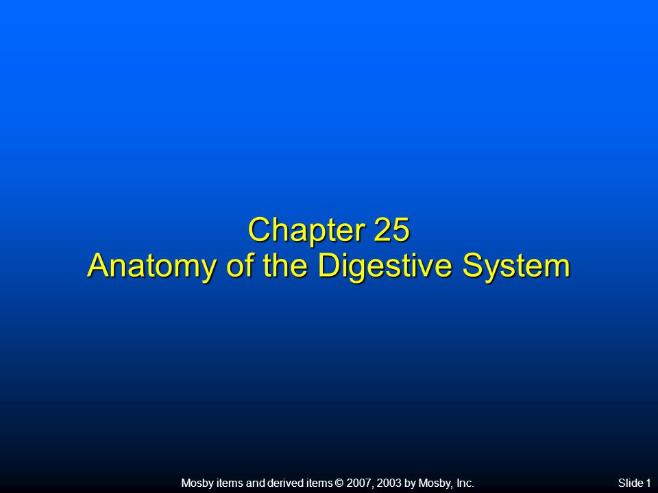 Mosby items and derived items © 2007, 2003 by Mosby, Inc.Slide 1 Chapter 25 Anatomy of the Digestive System