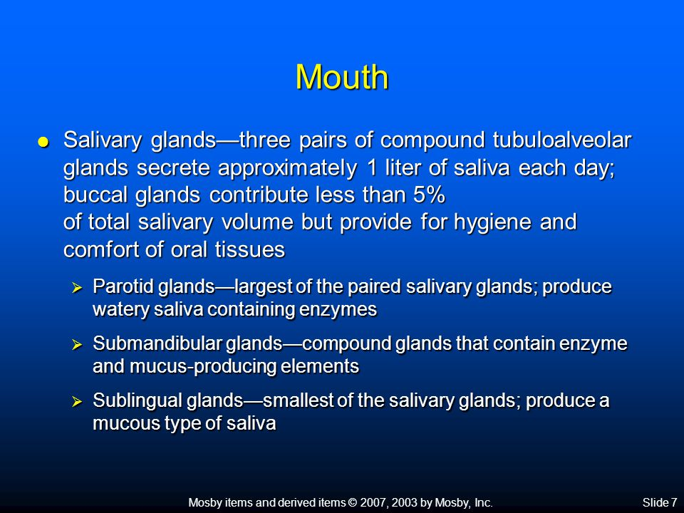 Mosby items and derived items © 2007, 2003 by Mosby, Inc.Slide 7 Mouth  Salivary glands—three pairs of compound tubuloalveolar glands secrete approximately 1 liter of saliva each day; buccal glands contribute less than 5% of total salivary volume but provide for hygiene and comfort of oral tissues  Parotid glands—largest of the paired salivary glands; produce watery saliva containing enzymes  Submandibular glands—compound glands that contain enzyme and mucus-producing elements  Sublingual glands—smallest of the salivary glands; produce a mucous type of saliva
