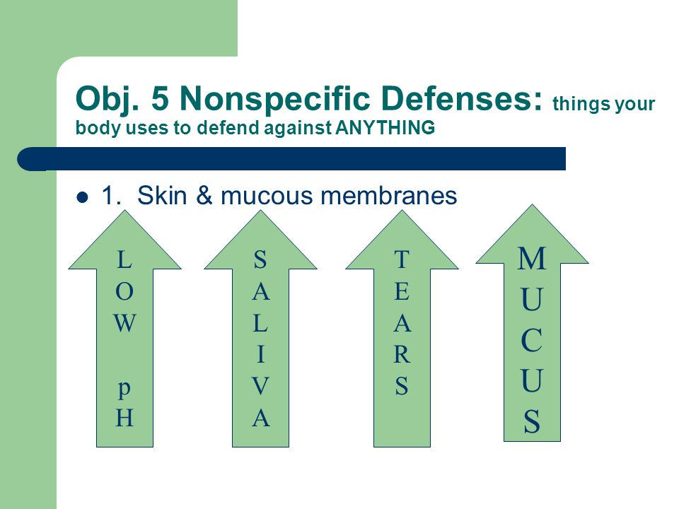 Obj. 5 Nonspecific Defenses: things your body uses to defend against ANYTHING 1.