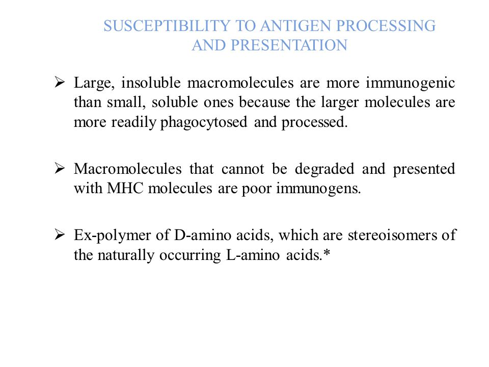 SUSCEPTIBILITY TO ANTIGEN PROCESSING AND PRESENTATION  Large, insoluble macromolecules are more immunogenic than small, soluble ones because the larger molecules are more readily phagocytosed and processed.