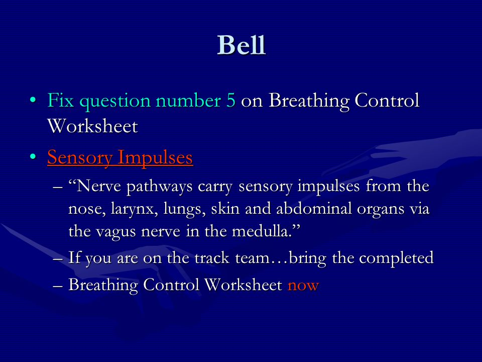 """Bell Fix question number 5 on Breathing Control WorksheetFix question number 5 on Breathing Control Worksheet Sensory ImpulsesSensory Impulses –""""Nerve"""