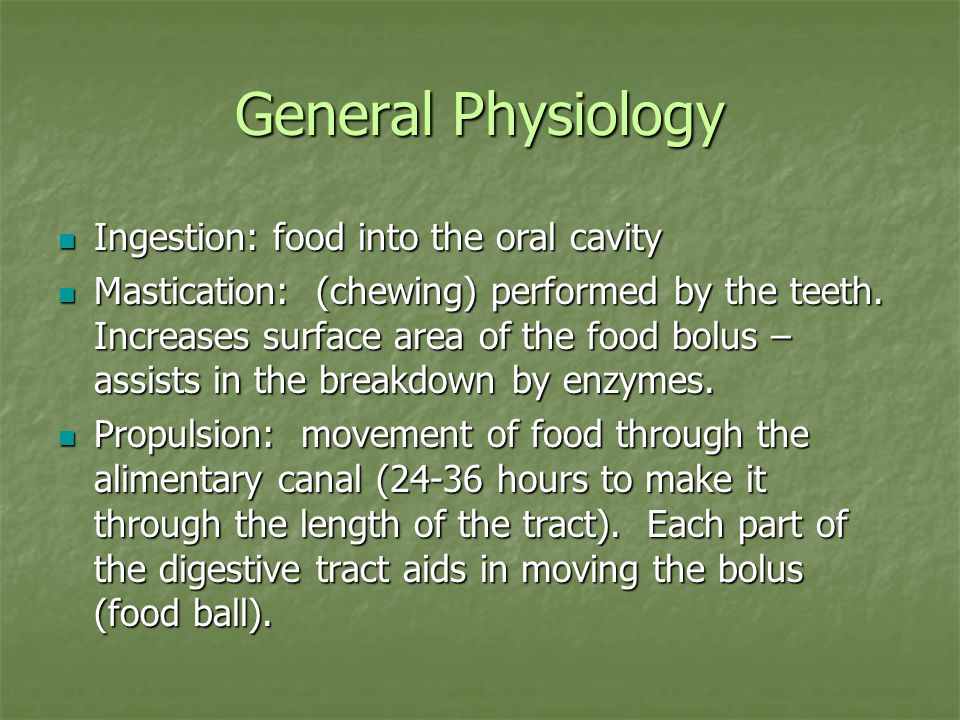 General Physiology Ingestion: food into the oral cavity Ingestion: food into the oral cavity Mastication: (chewing) performed by the teeth.
