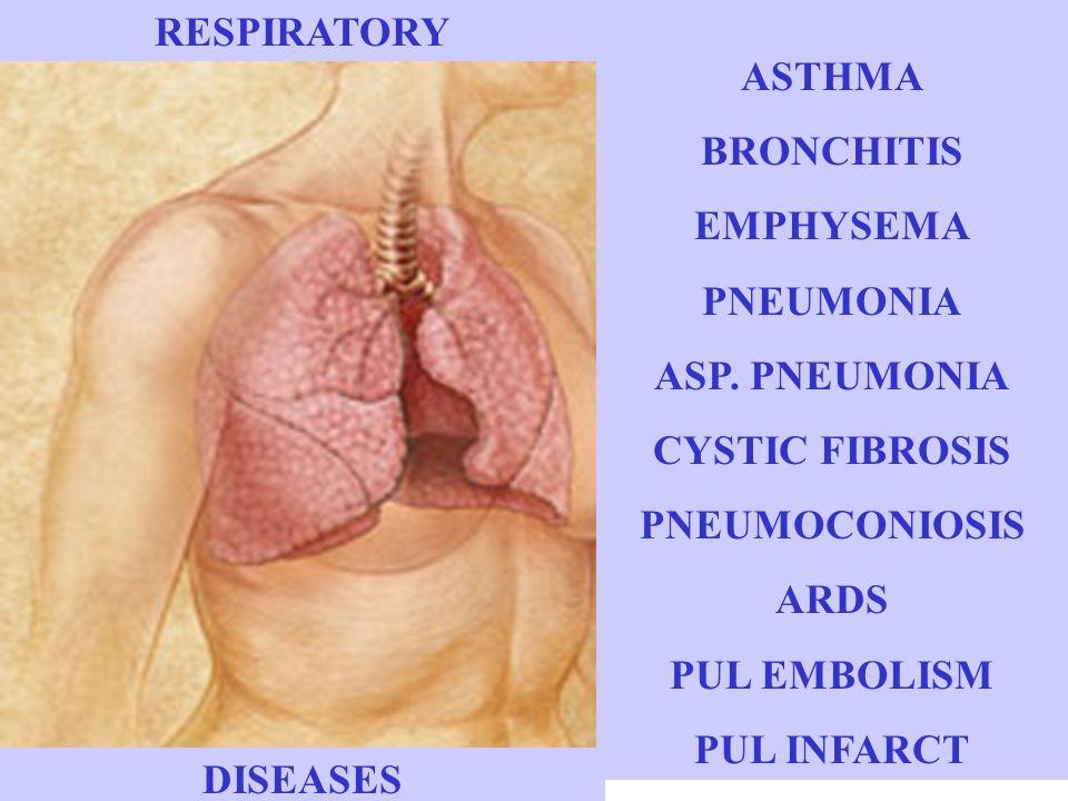 ASTHMA BRONCHITIS EMPHYSEMA PNEUMONIA ASP.