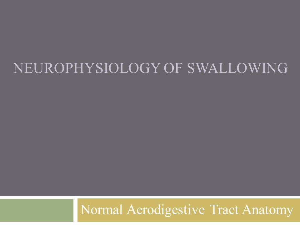 NEUROPHYSIOLOGY OF SWALLOWING Normal Aerodigestive Tract Anatomy