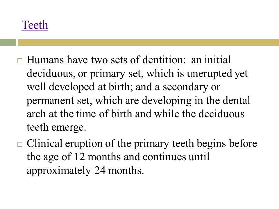 Teeth  Humans have two sets of dentition: an initial deciduous, or primary set, which is unerupted yet well developed at birth; and a secondary or permanent set, which are developing in the dental arch at the time of birth and while the deciduous teeth emerge.