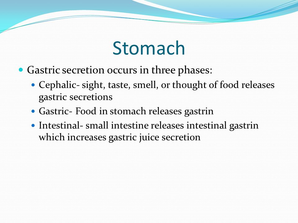 Stomach Gastric secretion occurs in three phases: Cephalic- sight, taste, smell, or thought of food releases gastric secretions Gastric- Food in stoma
