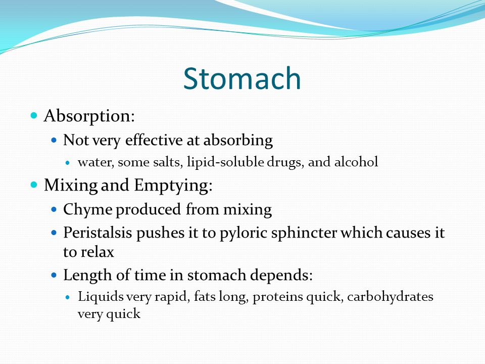 Stomach Absorption: Not very effective at absorbing water, some salts, lipid-soluble drugs, and alcohol Mixing and Emptying: Chyme produced from mixin