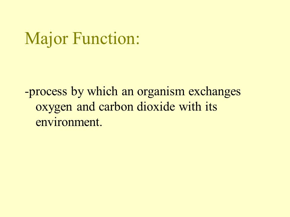 Major Function: -process by which an organism exchanges oxygen and carbon dioxide with its environment.