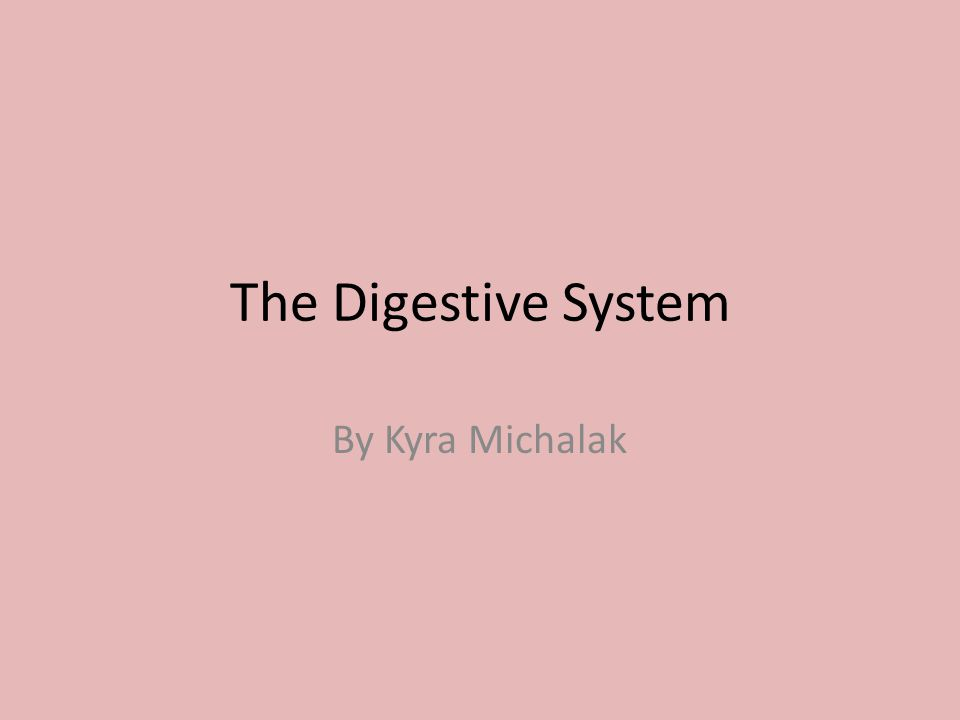 The Digestive System By Kyra Michalak