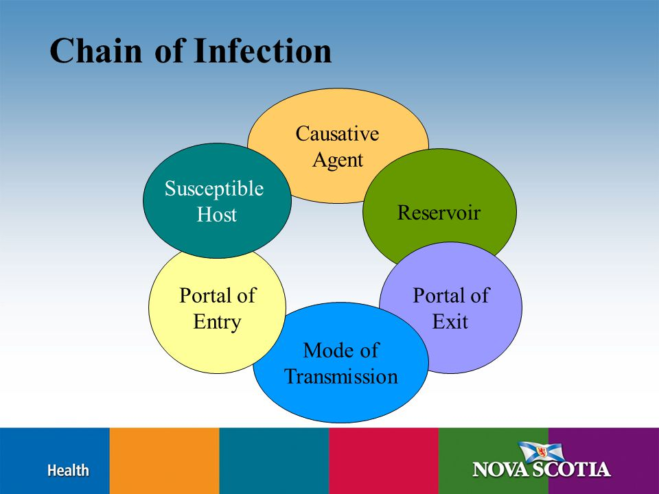 Chain of Infection Causative Agent Reservoir Portal of Exit Mode of Transmission Portal of Entry Susceptible Host