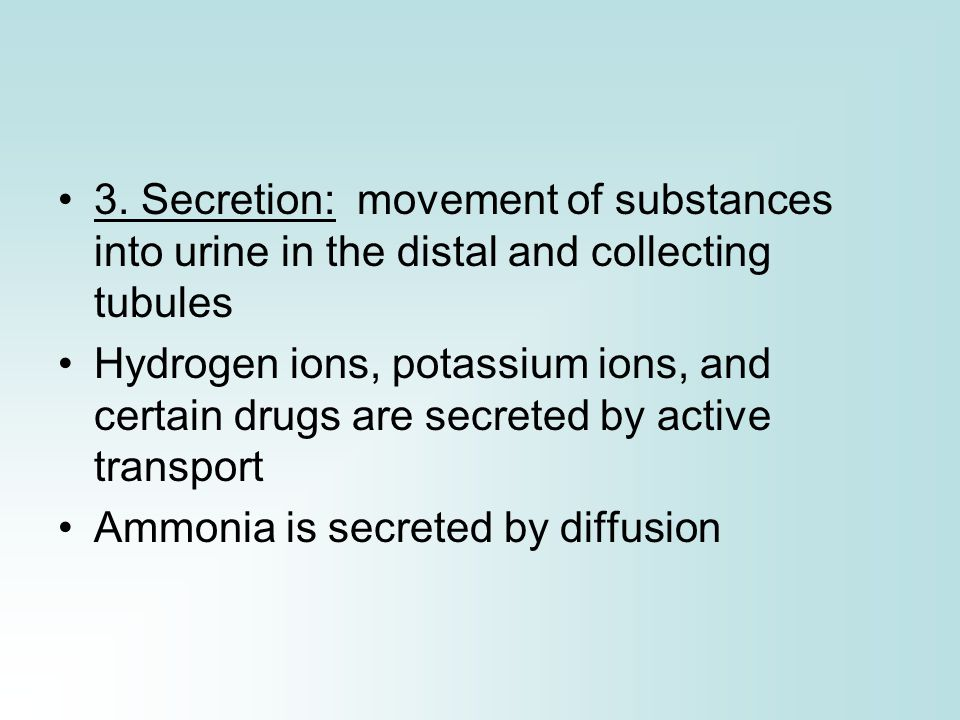 3. Secretion: movement of substances into urine in the distal and collecting tubules Hydrogen ions, potassium ions, and certain drugs are secreted by