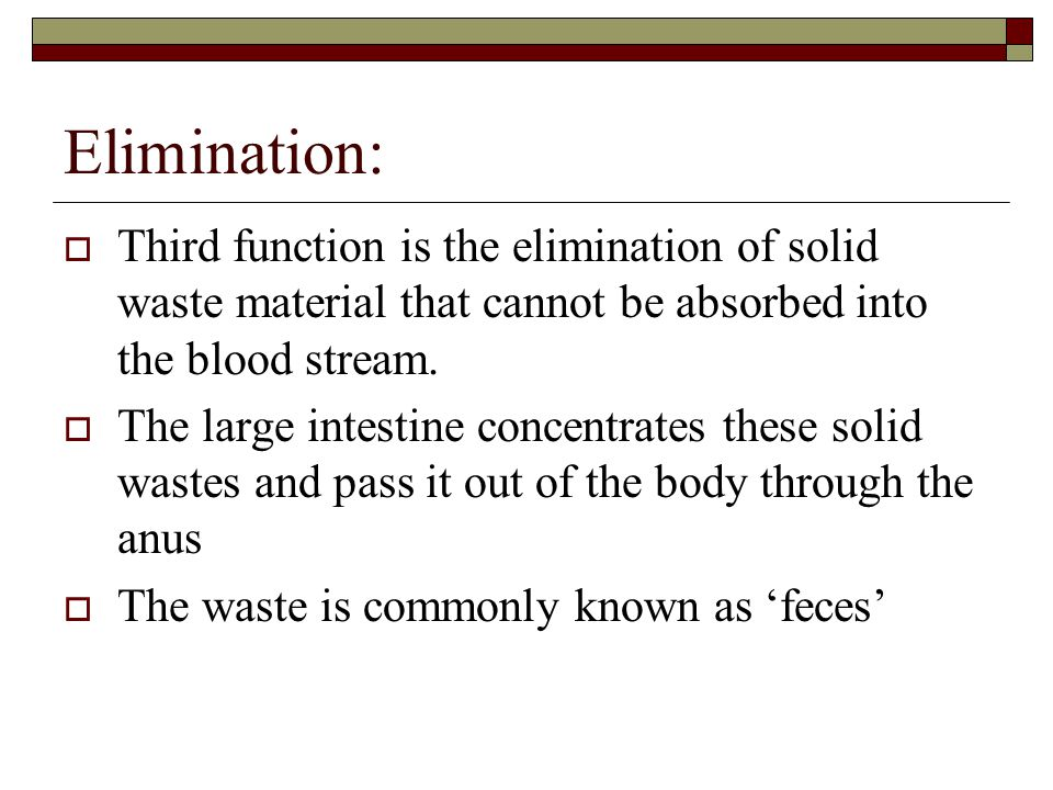 Elimination:  Third function is the elimination of solid waste material that cannot be absorbed into the blood stream.  The large intestine concentr