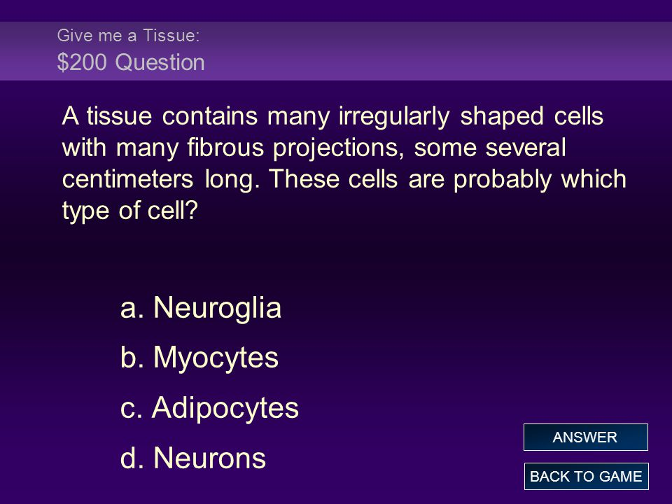 Give me a Tissue: $200 Question A tissue contains many irregularly shaped cells with many fibrous projections, some several centimeters long.