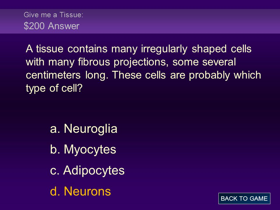 Give me a Tissue: $200 Answer A tissue contains many irregularly shaped cells with many fibrous projections, some several centimeters long.