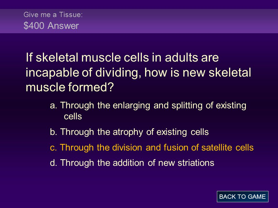 Give me a Tissue: $400 Answer If skeletal muscle cells in adults are incapable of dividing, how is new skeletal muscle formed.