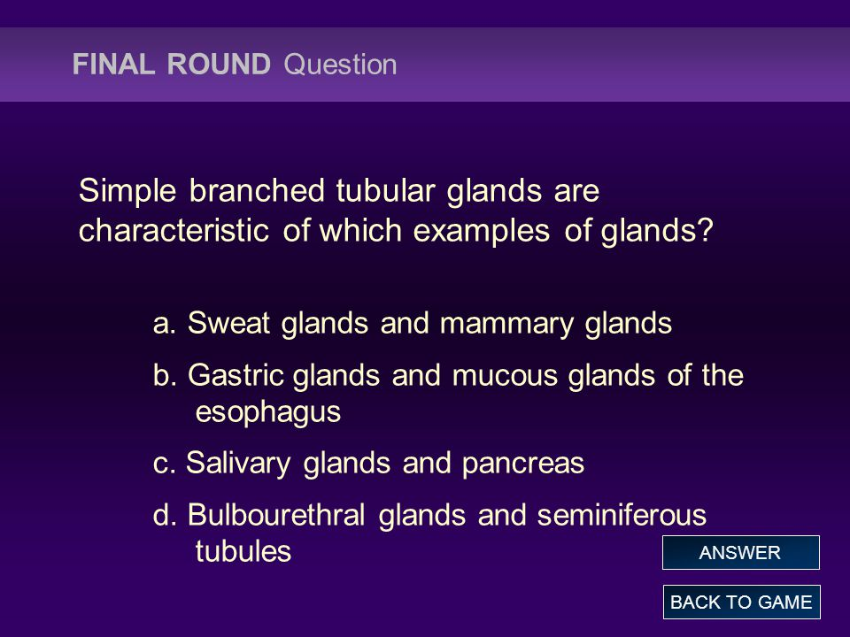 FINAL ROUND Question Simple branched tubular glands are characteristic of which examples of glands.
