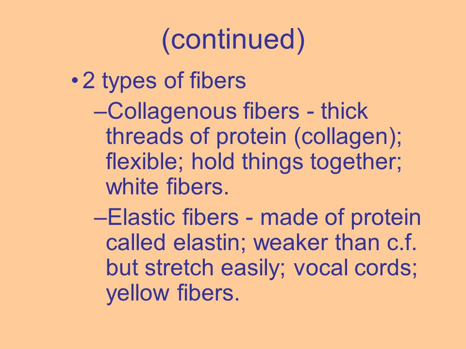 2 types of fibers –Collagenous fibers - thick threads of protein (collagen); flexible; hold things together; white fibers. –Elastic fibers - made of p
