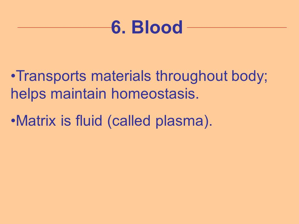6. Blood Transports materials throughout body; helps maintain homeostasis. Matrix is fluid (called plasma).