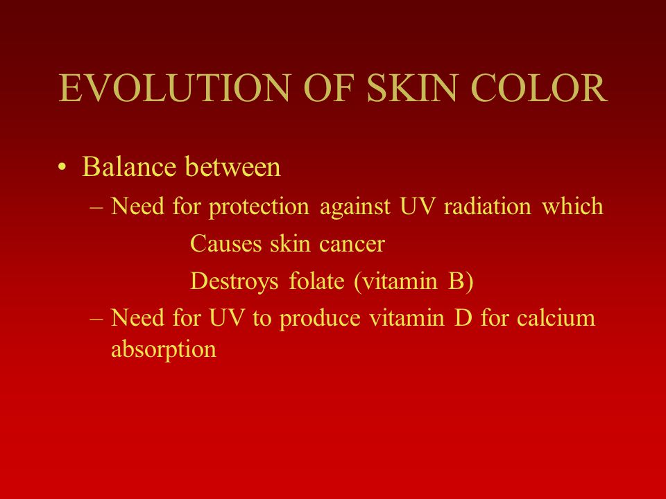 EVOLUTION OF SKIN COLOR Balance between –Need for protection against UV radiation which Causes skin cancer Destroys folate (vitamin B) –Need for UV to