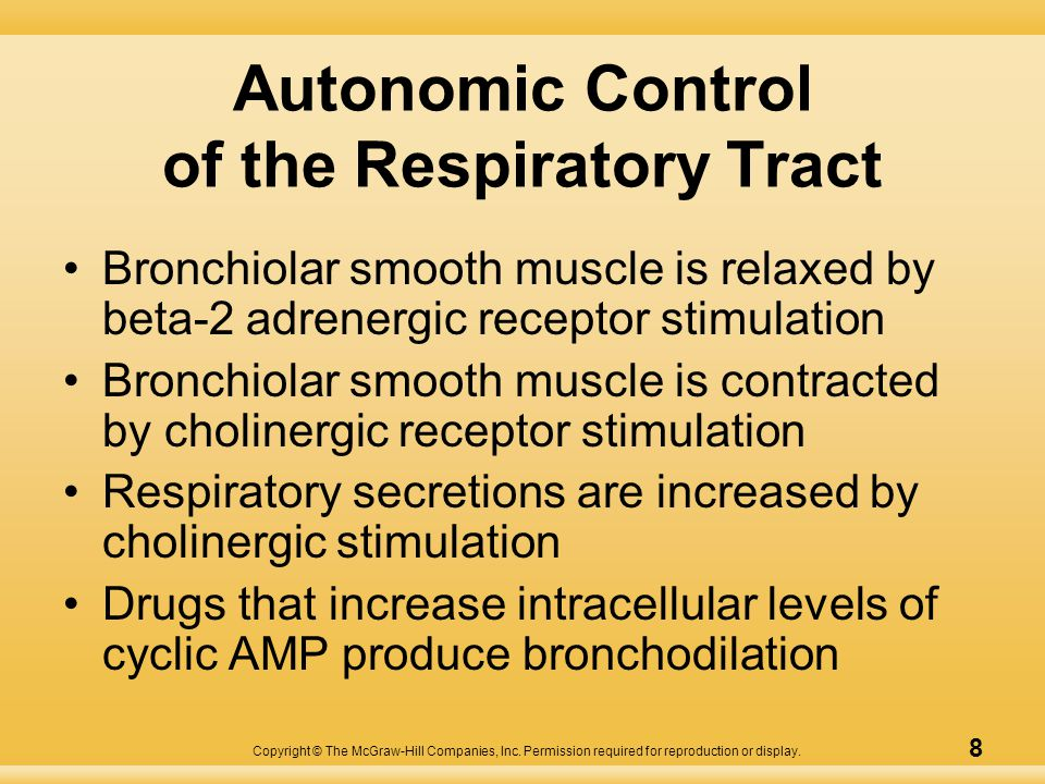 Copyright © The McGraw-Hill Companies, Inc. Permission required for reproduction or display. 8 Autonomic Control of the Respiratory Tract Bronchiolar