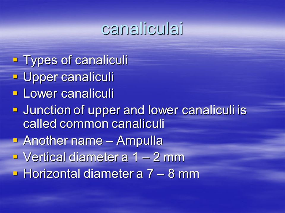 canaliculai  Types of canaliculi  Upper canaliculi  Lower canaliculi  Junction of upper and lower canaliculi is called common canaliculi  Another name – Ampulla  Vertical diameter a 1 – 2 mm  Horizontal diameter a 7 – 8 mm