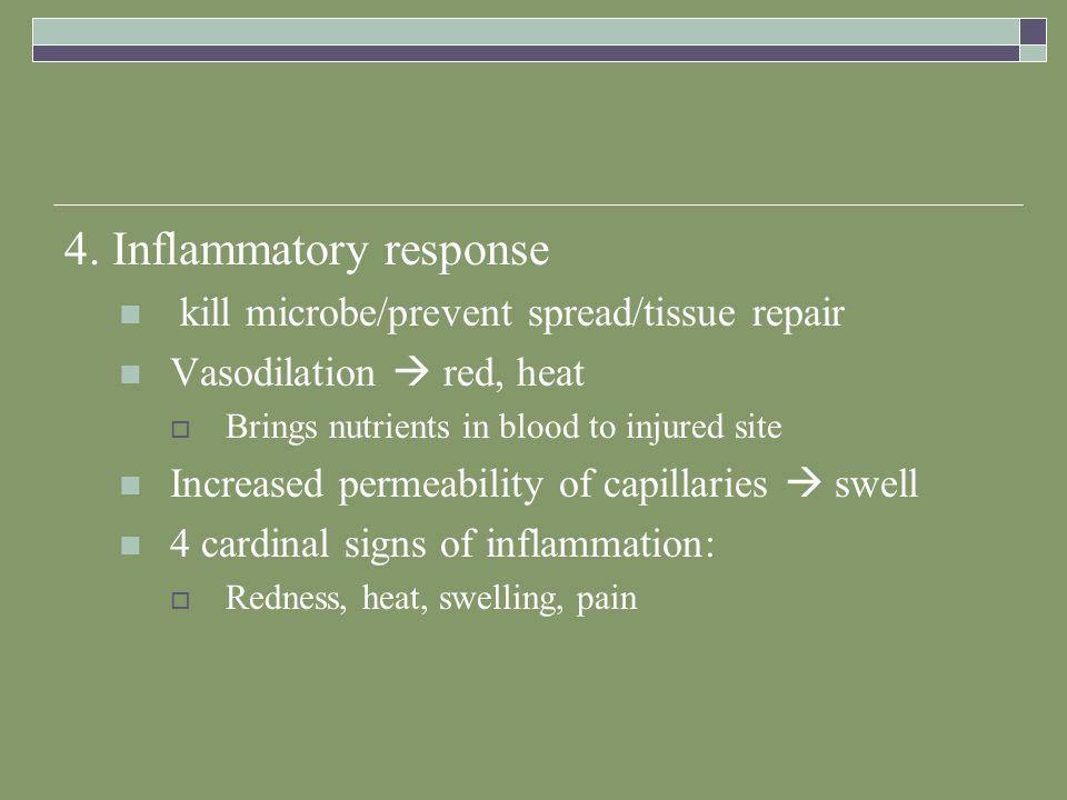 4. Inflammatory response kill microbe/prevent spread/tissue repair Vasodilation  red, heat  Brings nutrients in blood to injured site Increased perm