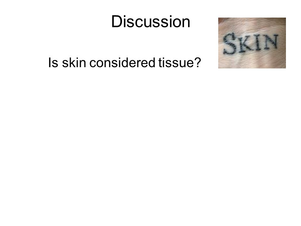Discussion Is skin considered tissue?