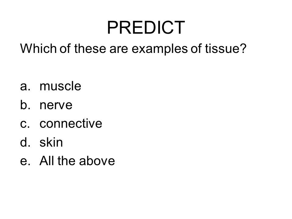 PREDICT Which of these are examples of tissue? a.muscle b.nerve c.connective d.skin e.All the above