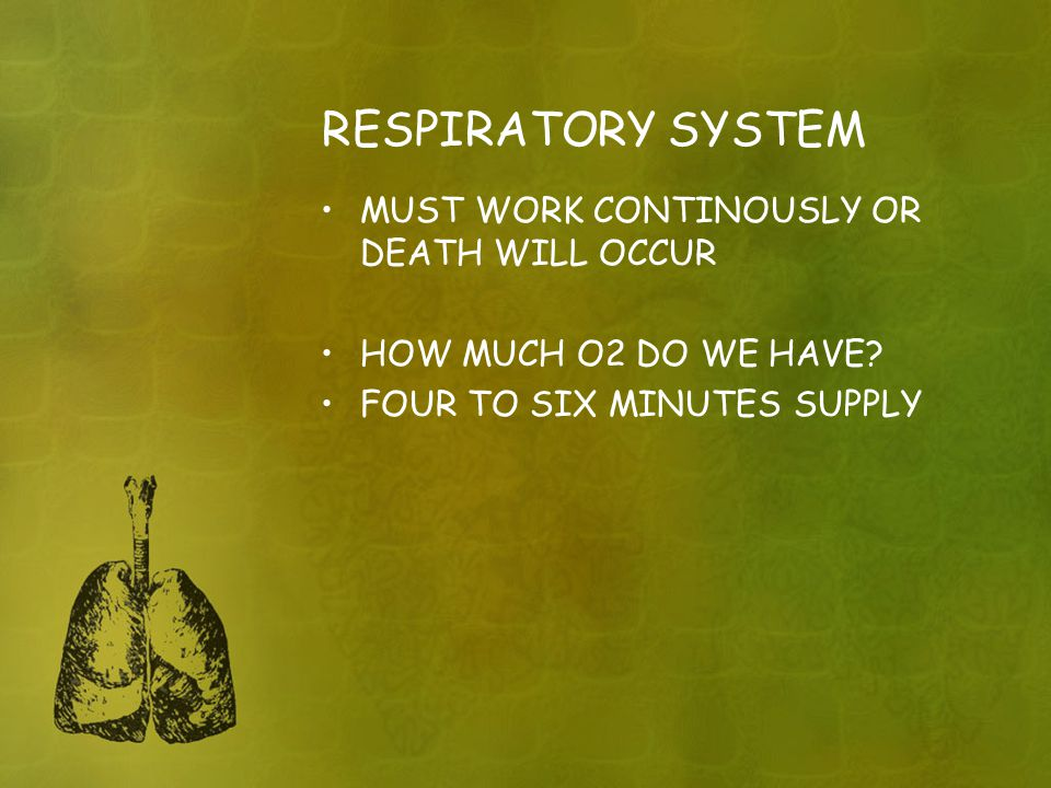 RESPIRATORY SYSTEM MUST WORK CONTINOUSLY OR DEATH WILL OCCUR HOW MUCH O2 DO WE HAVE.