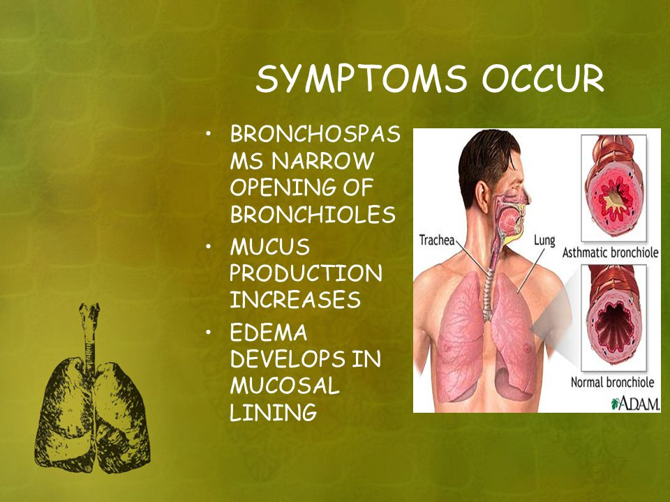 SYMPTOMS OCCUR BRONCHOSPAS MS NARROW OPENING OF BRONCHIOLES MUCUS PRODUCTION INCREASES EDEMA DEVELOPS IN MUCOSAL LINING